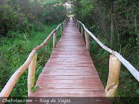 Senderos en los Esteros del Iberá