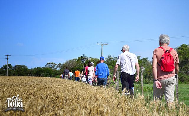 caminando-por-el-campo