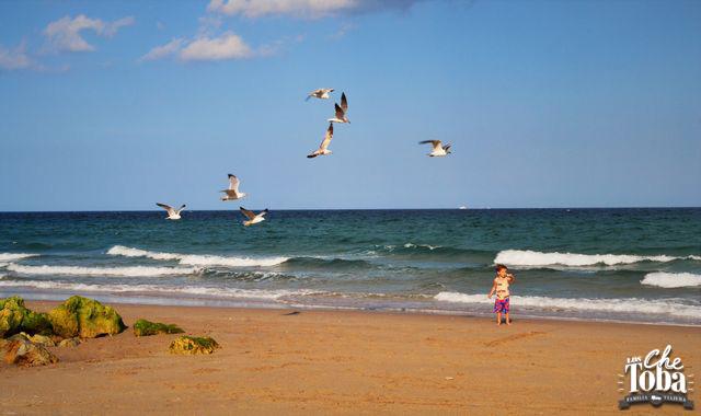 deerfield-beach
