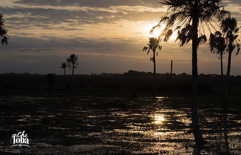 Paisajes de los Esteros del Iberá