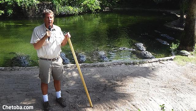 Cocodrilos Busch Gardens