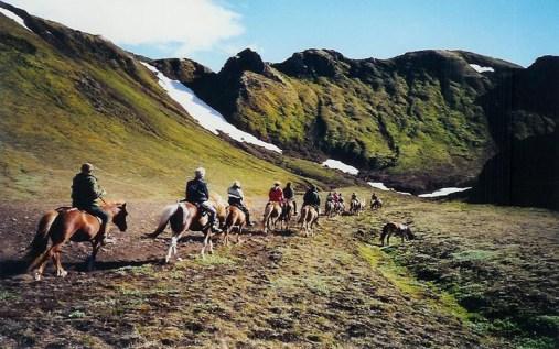 rando cheval islande