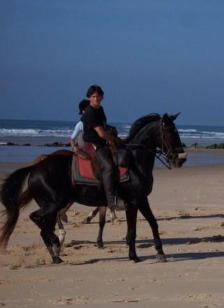 rando cheval france