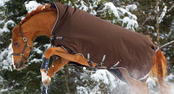 Les couvertures pour chevaux