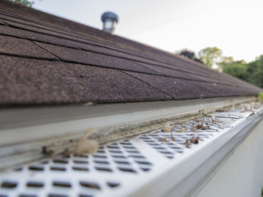 Are gutter guards worth the cost?