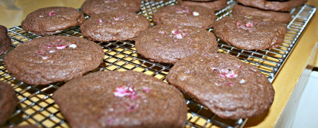 peppermint chocolate chip mocha cookies