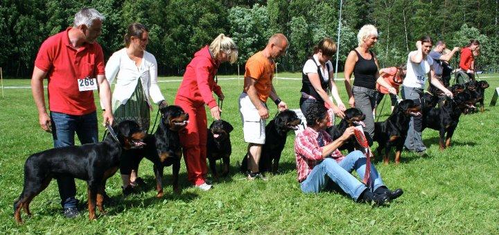 Best BreedersGroup SSU 2010