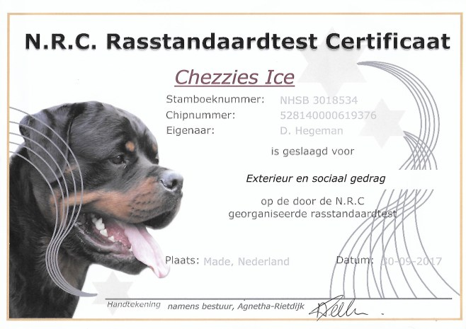 Ice rst diploma