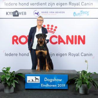 1 veel belovend, beste pup Eindhoven