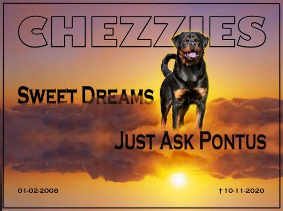 Pontus 2020-11-10 at 22.57.23