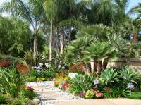 San Diego landscape ideas for the new homeowner - C & H ...