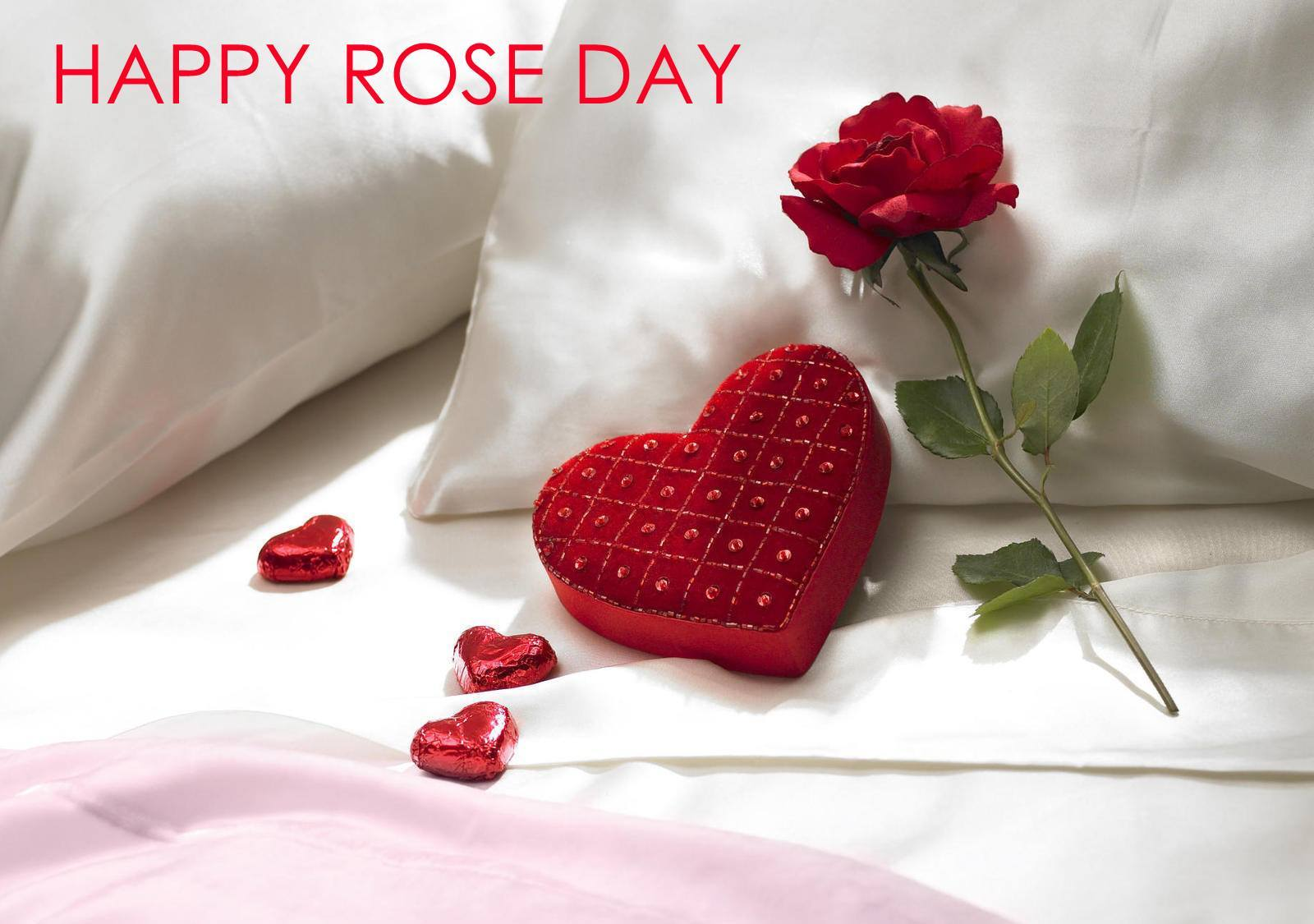 happy-rose-day-wallpaper-2020