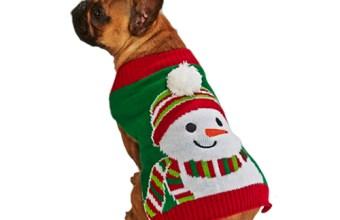 Idee Regalo Natale 2013 per animali domestici, il cane