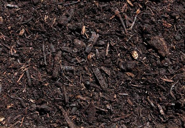 Concimare orto con Humus