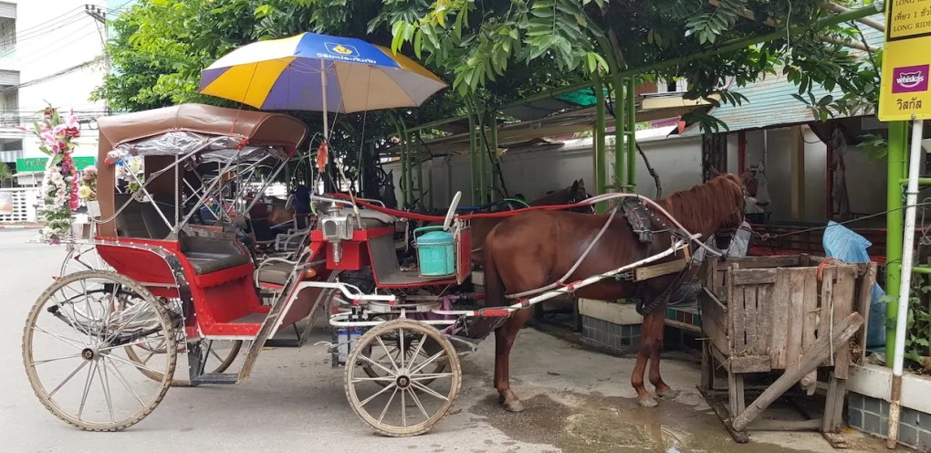 old fashioned horse cart