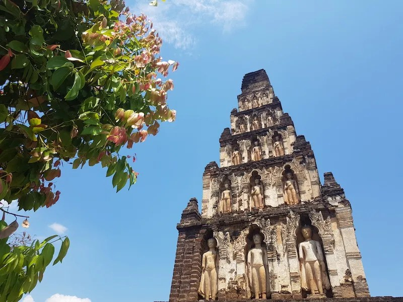 Chedi with tree Things to do