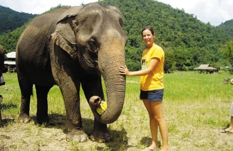 Caring for Rescued Elephants in Thailand