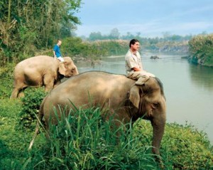 John Edwards Roberts is the Director of Elephants and Conservation Activities who oversees a community of 56 elephant aides to care for the animals and conduct informal riding lessons for fascinated visitors. Read more: http://communities.washingtontimes.com/neighborhood/donnes-world/2013/feb/8/northern-thailand-new-golden-triangle/#ixzz2KLzefMxR Follow us: @wtcommunities on Twitter