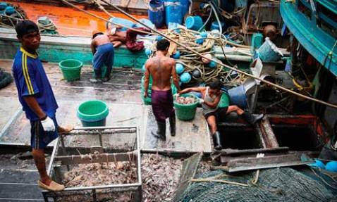 Burmese men kept as forced labourers on shrimping boats in Kantang, Thailand, says Environmental Justice Foundation