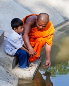 Monk & child released baby turtle into holding pond