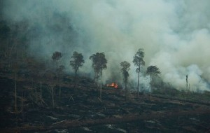 Fires that farmers set to clear land - one of the main problems for people in the North.