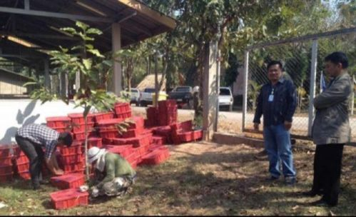 The three men were carrying  214 plastic baskets from their car to the Mekong River the provincial seat's Pako subdistrict