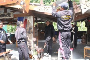 Phuket beach bars pulled down after deadline expired - Photo Phuket News