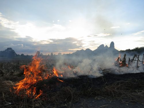 Farmers practice slash and burn agriculture in the belief that ashes will replenish the soil and increase the productivity of the fields.