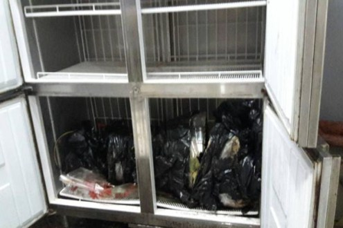 A dismembered male body wrapped in plastic was found in a freezer at the site of the fake-passport raid. (Tourist police photo)