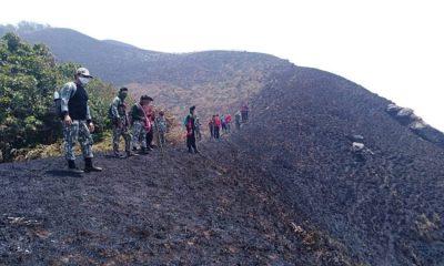 Wildfire threatens wild elephant habitat