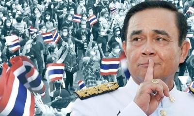 thailand, covid-19 coronavirus, starvation, suicide