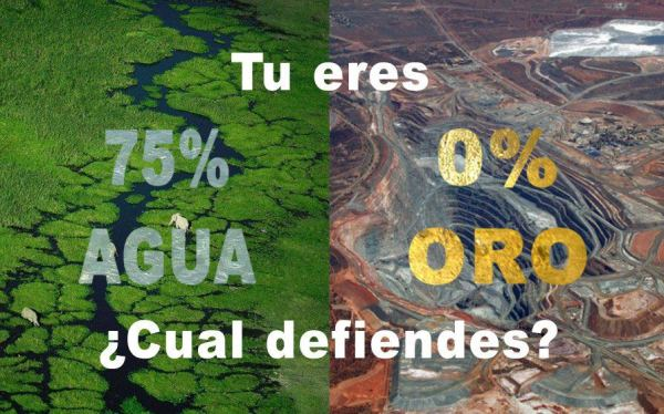Para la exploración y extracción minera están comprometidas 357 mil 443.87 hectáreas de tierra, ubicadas en 40 de los 122 municipios de Chiapas.