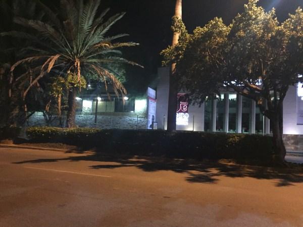 Más de 133 árboles y palmeras que se erigen en el camellón del boulevard. Foto. Francisco Cordero
