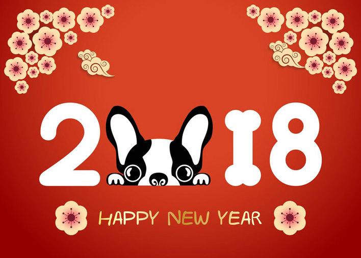 Calendario Cinese 1995.2018 L Anno Del Cane Chiara Buchetti