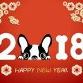 2018: l'anno del cane