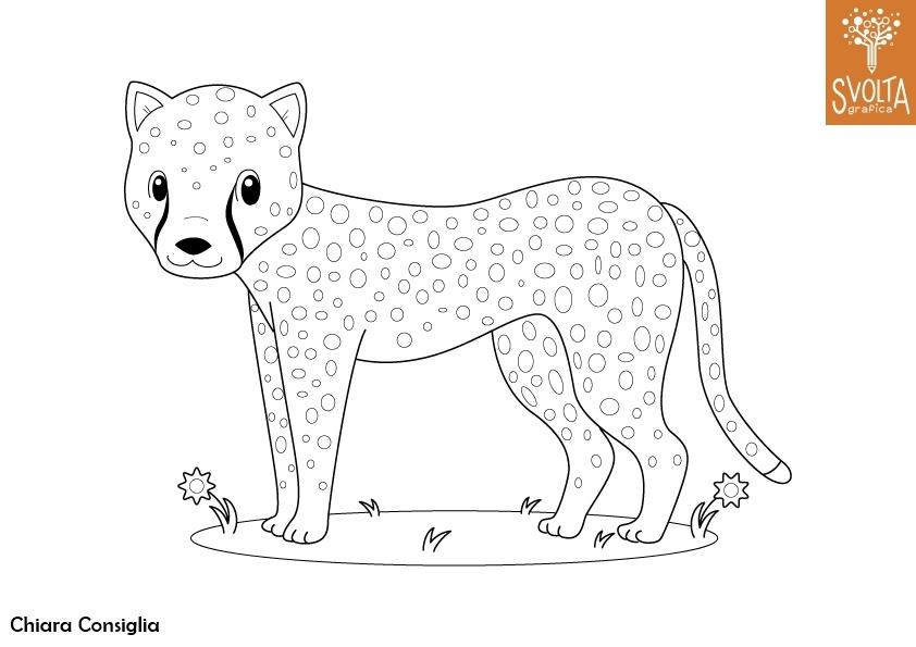 Disegni Da Colorare Gli Animali Della Savana