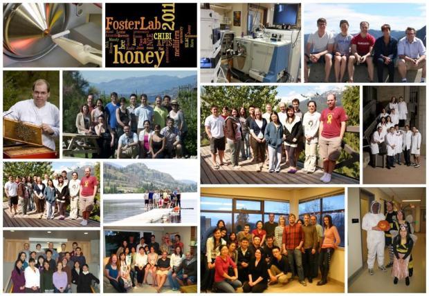 Mosaic_Foster Lab Group Photos