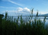 Autour de l'étang de Biguglia
