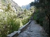 Un chemin en pierres