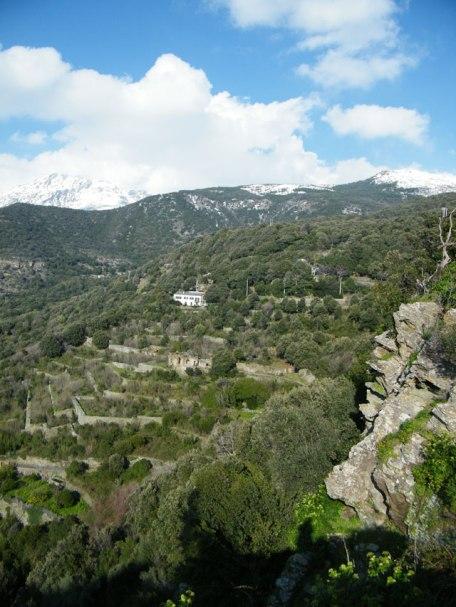 Les terrasses où étaient cultivés les Cédrats.
