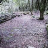 Les restes d'une chapelle romane.