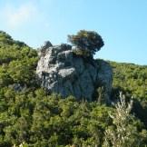 Un drôle de rocher