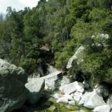 Ce pont de singe permet d'aller aux bergeries du Verdanese