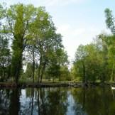 Petit tour aux étangs de Vers-le-petit