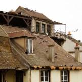 Un toit plein de pigeons