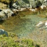 L'eau du Pozzolo est claire