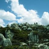 Sur le chemin, des pierres sculptées