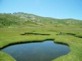 Les pozzines du lac de Nino