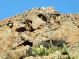 Les rochers sont pleins de tafoni