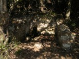 Une fontaine dans le sous bois